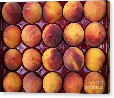 Nectarines - 5d17068 Canvas Print by Wingsdomain Art and Photography