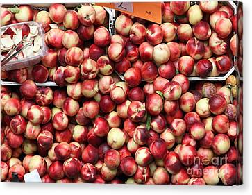 Nectarines - 5d17905 Canvas Print by Wingsdomain Art and Photography