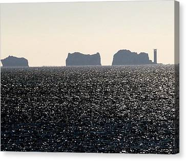 Needles Canvas Print
