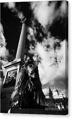nelsons column and lion inTrafalgar Square London England UK United kingdom Canvas Print by Joe Fox