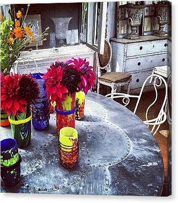 Neon Bright Vases Canvas Print by Natasha Futcher