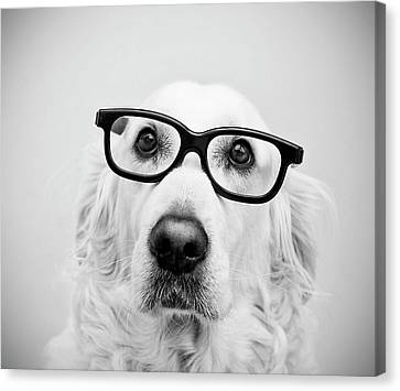 Dogs Canvas Print - Nerd Dog by Thomas Hole