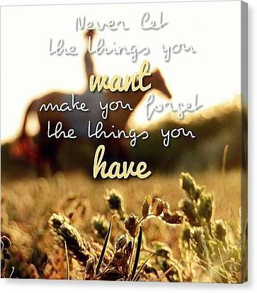 Never Let The Things You Want Make You Canvas Print by Traci Beeson