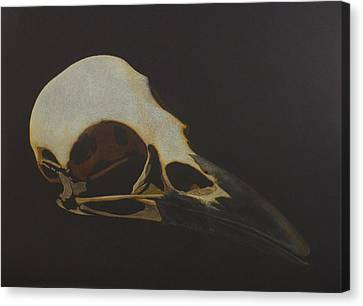 Nevermore Canvas Print by Norm Holmberg