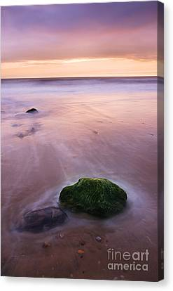 New Day Canvas Print by Martin Williams