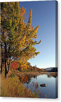 New Mills Meadow Pond Canvas Print by Juergen Roth