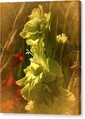 New Vintage Glad No. 4 Canvas Print