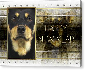 New Year - Golden Elegance Australian Kelpie Canvas Print by Renae Laughner
