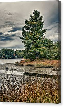 Nh Waterway 3 Canvas Print by Edward Myers