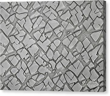 Nickel Alloy Canvas Print by Omikron