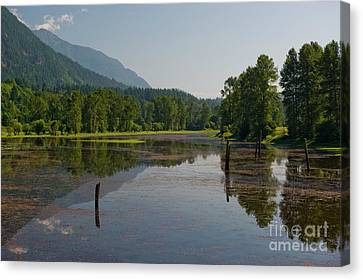 Nicomen Slough 2 Canvas Print by Rod Wiens