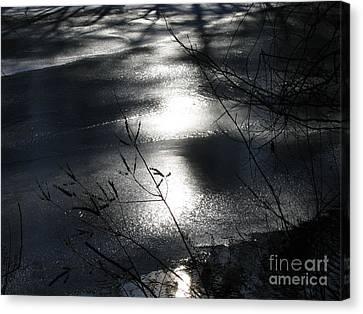 Night Lake Canvas Print