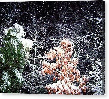 Night Snow 2 Canvas Print by Sandi OReilly