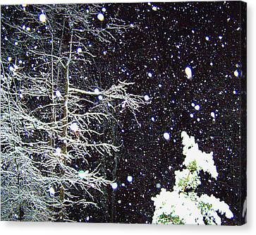 Night Snow Canvas Print by Sandi OReilly