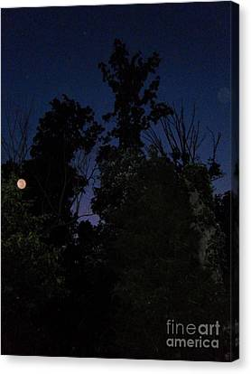 Night Welcomes Day Canvas Print by Doug Kean