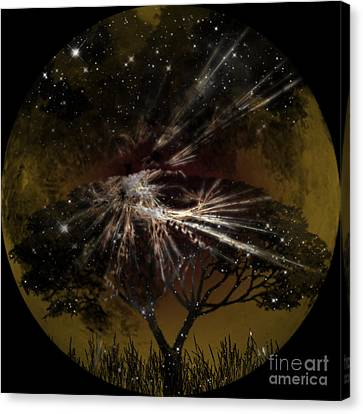 Nightscape Canvas Print by Thomas OGrady
