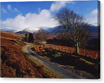 Nire Valley Drive, County Waterford Canvas Print by Richard Cummins