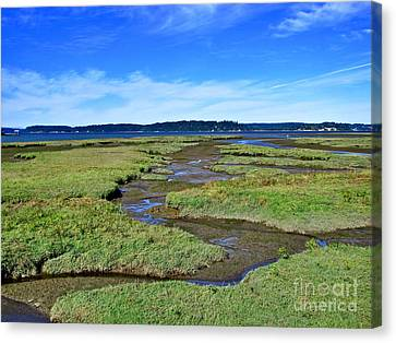 Nisqually Estuary At Low Tide Canvas Print by Sean Griffin