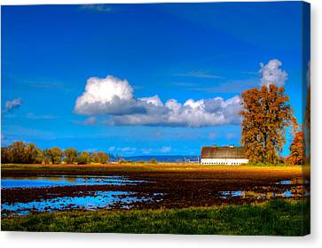 Nisqually Wildlife Refuge P35 Canvas Print by David Patterson