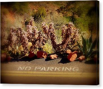 No Parking Canvas Print by Cindy Wright