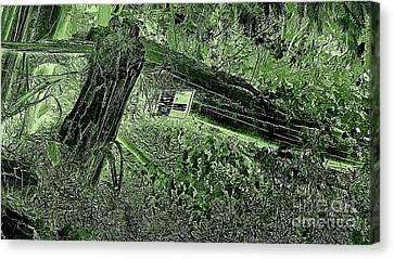No Trespassing  Canvas Print by Garnett  Jaeger