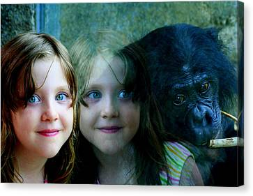 Canvas Print featuring the photograph Nora's Reflection by Laurel Talabere