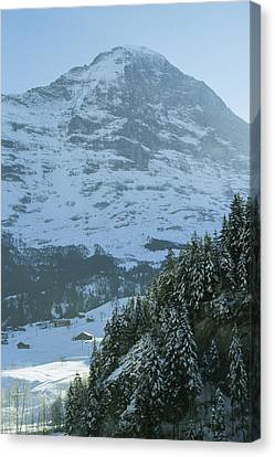 North Face Of The Eiger Towers Canvas Print by Gordon Wiltsie