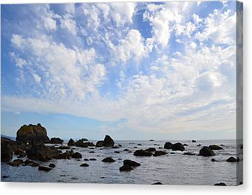 Northern California Coast1 Canvas Print by Zawhaus Photography