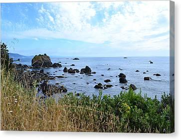 Northern California Coast2 Canvas Print