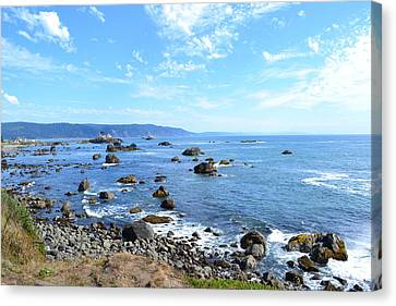 Northern California Coast3 Canvas Print by Zawhaus Photography