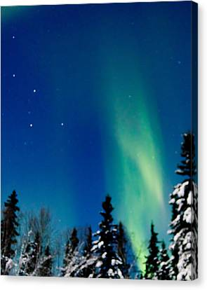 Northern Light Spiral To Cassiopeia Canvas Print by John Aldabe
