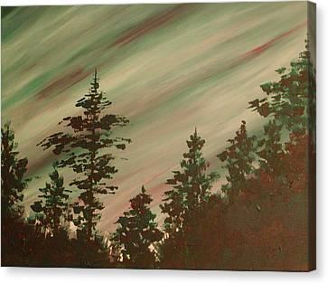 Northern Lights Canvas Print by Debbie Beck