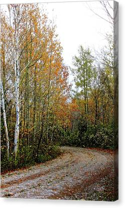 Northern Michigan Autumn 3 Canvas Print by Scott Hovind