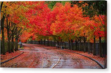 Canvas Print featuring the photograph Northwest Autumn by Ken Stanback