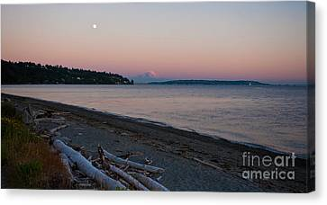 Northwest Evening Canvas Print by Mike Reid