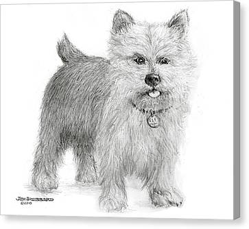 Canvas Print featuring the drawing Norwich Terrier by Jim Hubbard