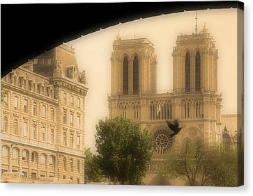 Notre Dame Cathedral Viewed Canvas Print by John Sylvester