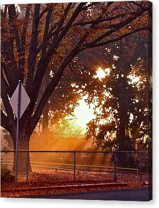 November Sunrise Canvas Print by Bill Owen