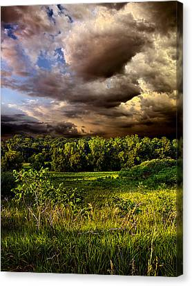 Now And Then Canvas Print by Phil Koch