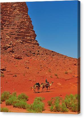 Nubian Camel Rider Canvas Print by Tony Beck
