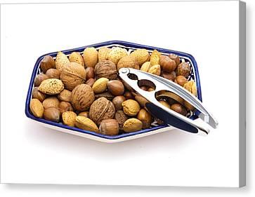 Nuts Canvas Print by Tom Gowanlock