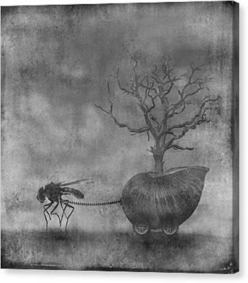 o5 Canvas Print by Simon Siwak