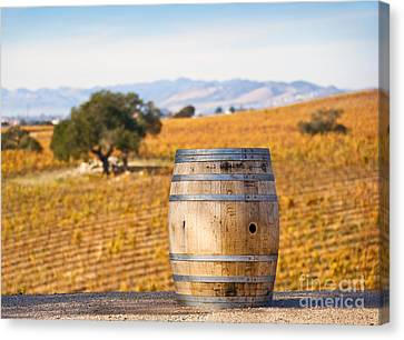 Oak Barrel At Vineyard Canvas Print by David Buffington