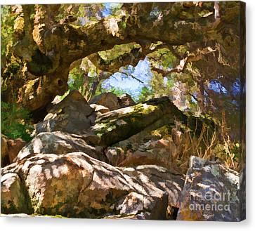 Oak Canopy Canvas Print