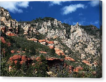 Oak Creek Nature Canvas Print by John Rizzuto