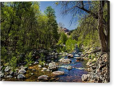 Oak Creek Canvas Print by Robert Bales