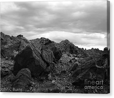 Obsidian Field Canvas Print