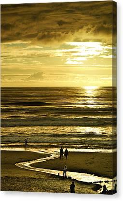 Ocean Play 2 Canvas Print by Dale Stillman