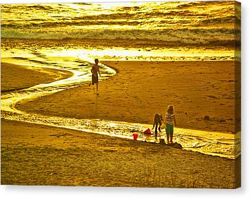 Ocean Play Canvas Print by Dale Stillman