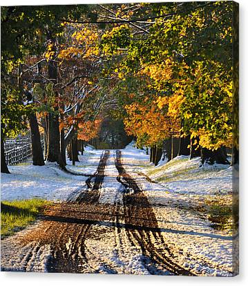 October Road Canvas Print by Bill Cannon